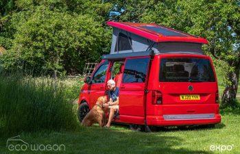 A Vans Best Friend